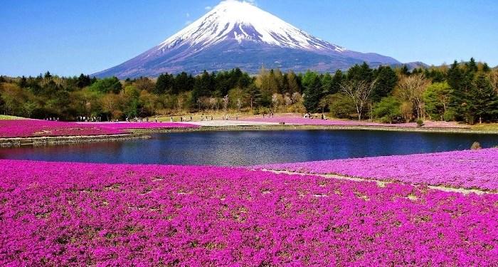 Gunung Fuji. Foto: Binus