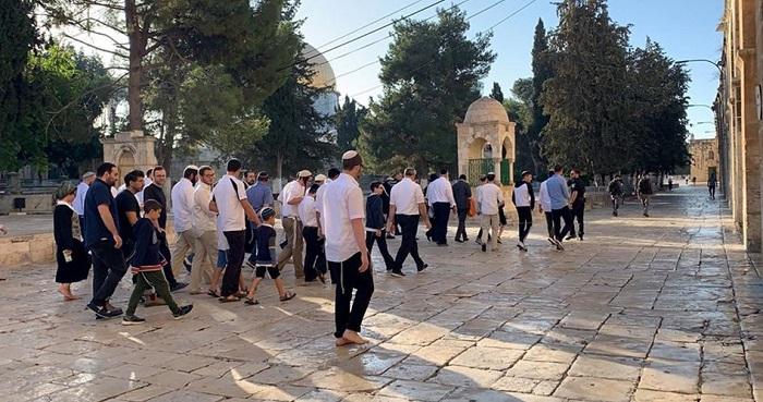 Yahudi serbu masuk Al Aqsha. Foto: PIC