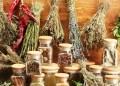 tanaman herbal turki