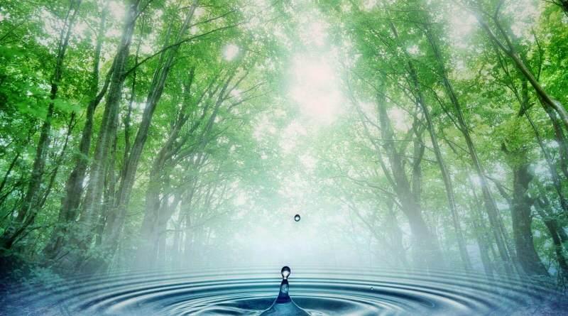 Gota de agua súplica