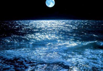 El día que el mar conoció al Profeta (BPDyC)