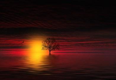 'Amá' Oscuridad divina