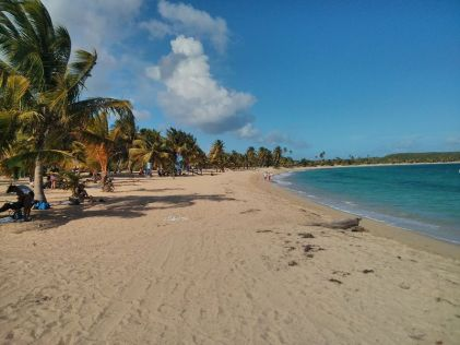 Image result for sun bay beach vieques