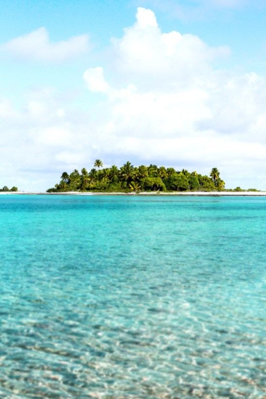 A view of one of the motu on Timoe atoll from the clear waters of the lagoon