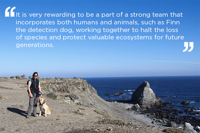 island-conservation-finn-the-wonder-dog-quote-4