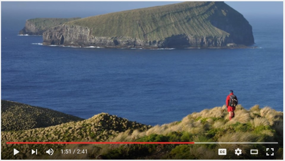 Island-conservation-science-antipodes-island-new-zealand-video