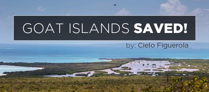 island conservation portland bight cielo figuerola jamaican rock iguana