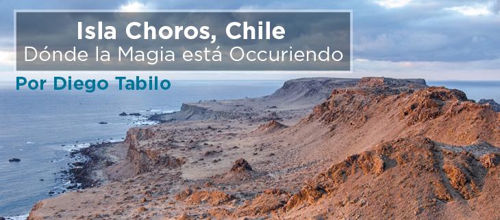 island conservation isla choros chile donde la magia esta ocurriendo