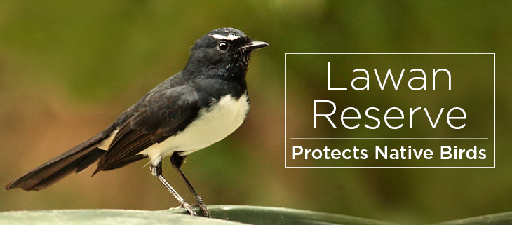 island conservation lawan reserve
