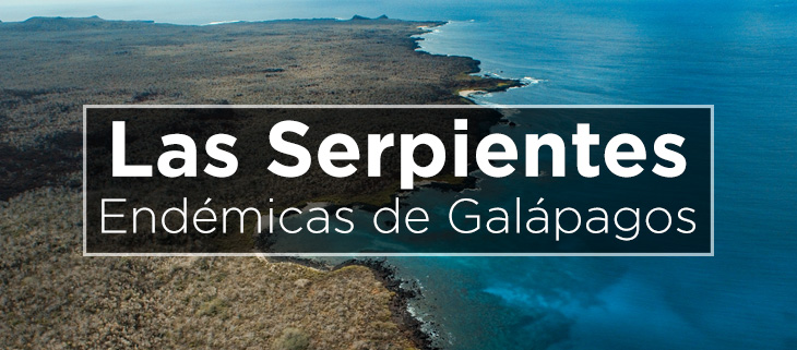 island-conservation-preventing-extinctions-galapagos-snakes-feat-spanish