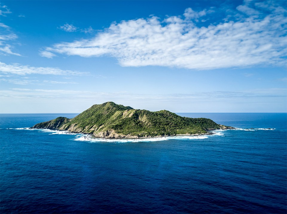 island-conservation-david-will-dundee-desecheo
