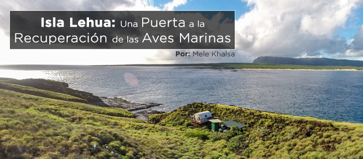 island-conservation-preventing-extinctions-mele-lehua-island-feat-2-spanish