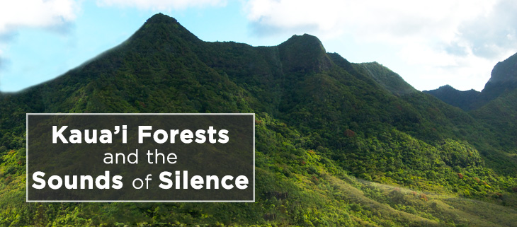 island-conservation-kauai-forest-hawaii-honeycreeper-feat