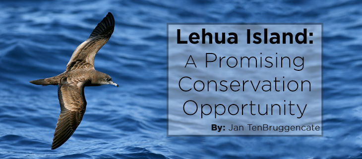island-conservation-lehua-island-feat