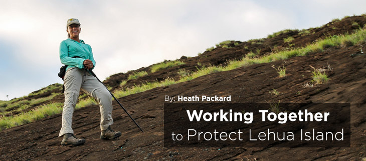 island-conservation-preventing-extinctions-lehua-island-restoration-heath-packard-feat