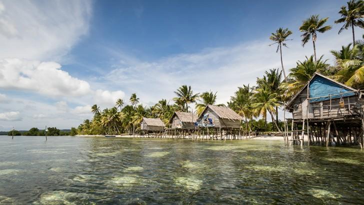 island-conservation-islands-sea-level-rise
