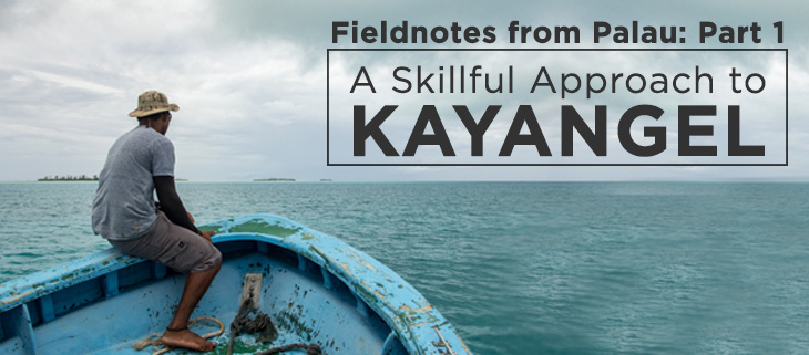 island-conservation-preventing-extinctions-fieldnotes-from-kayangel-tommy-hall-part-one-feat