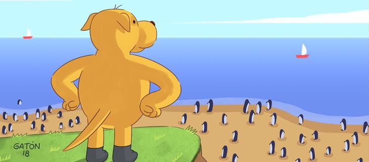 island-conservation-invasive-species-preventing-extinctions-finn-wonder-dog-saves-humboldt-penguins-feat