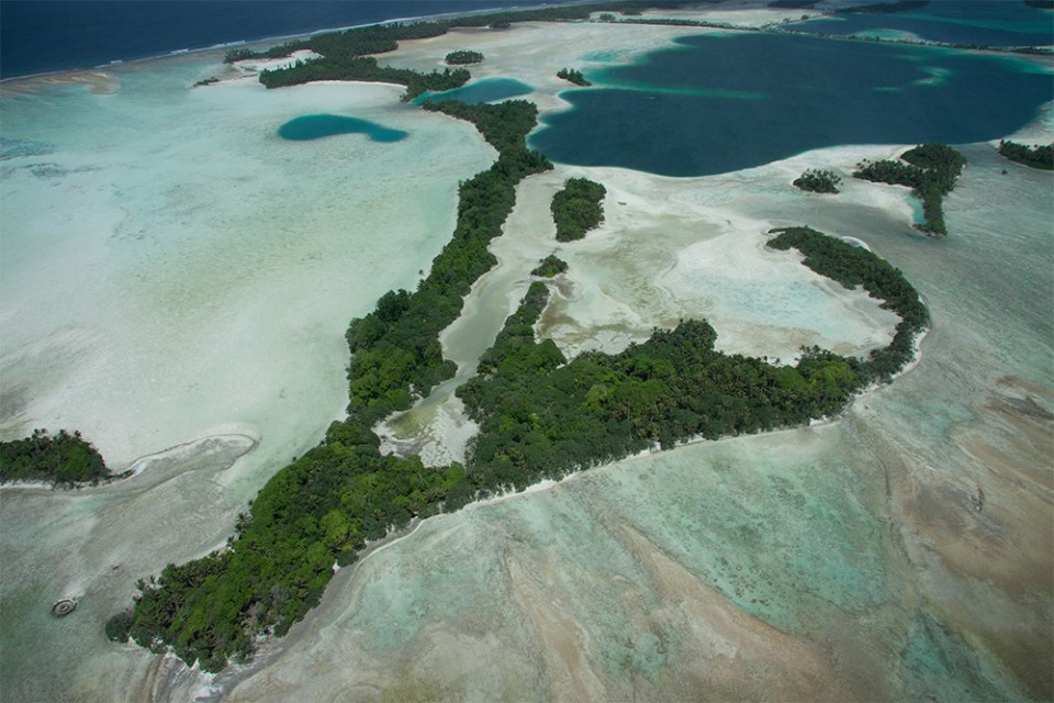 island-conservation-invasive-species-preventing-extinctions-coral-wolf-science-team-palmyra-atoll