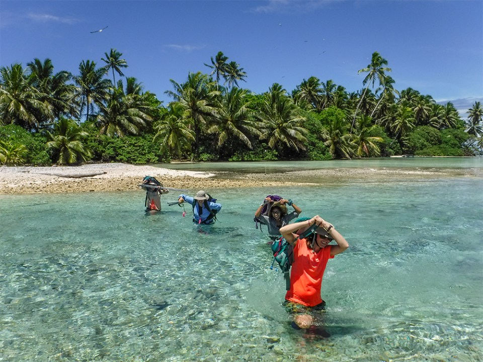 island-conservation-invasive-species-preventing-extinctions-coral-wolf-science-team
