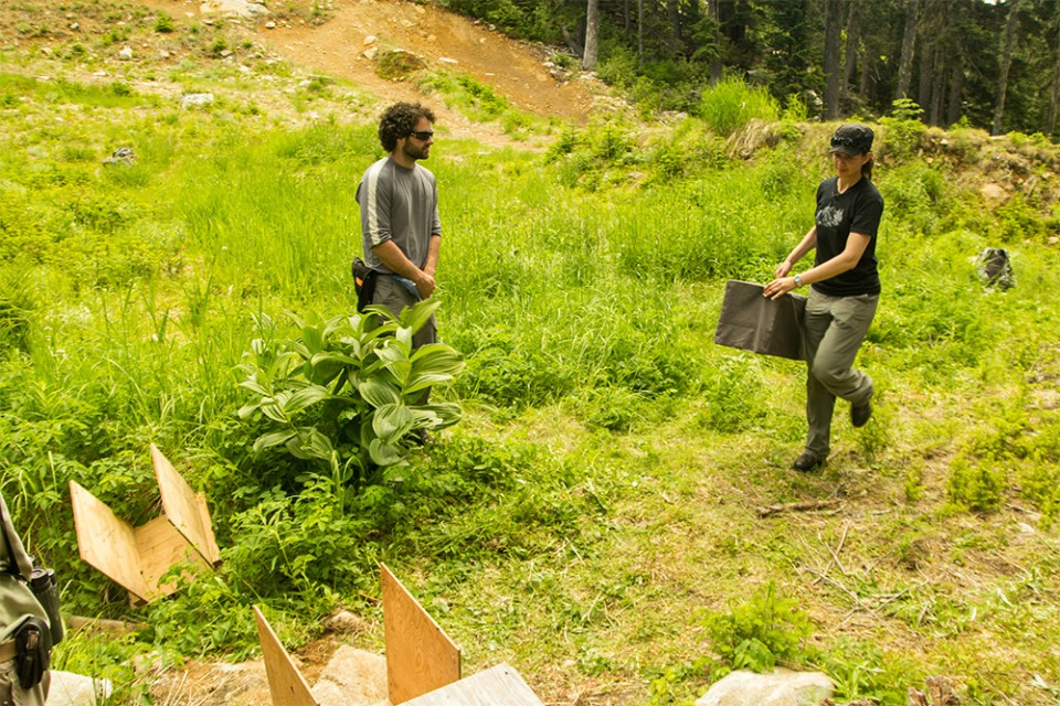 island-conservation-preventing-extinctions-invasive-species-vancouver-island-marmot-recovery