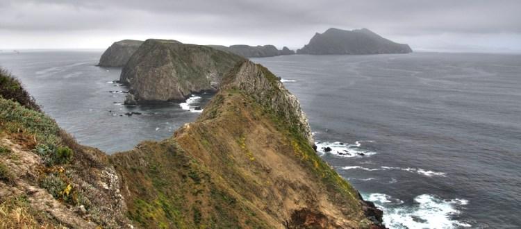 island-conservation-invasive-species-preventing-extinctions-anacapa-island
