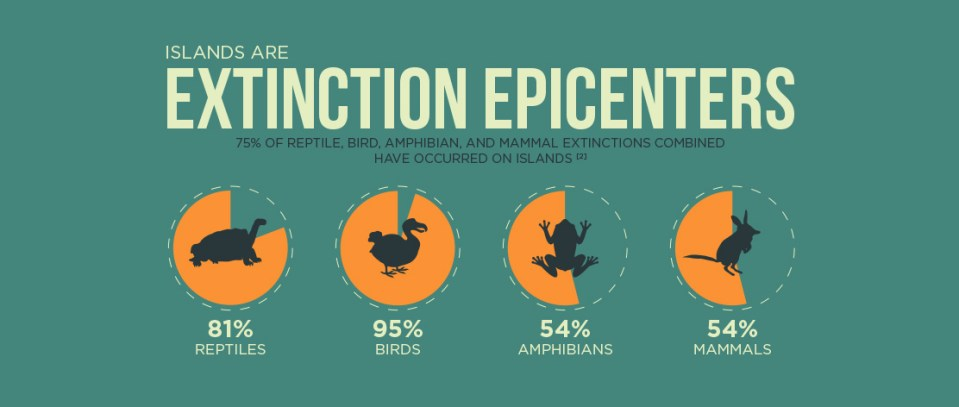 Islands are extinction epicenters