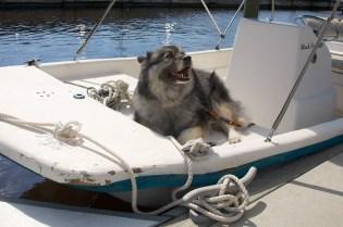 angel boating  037