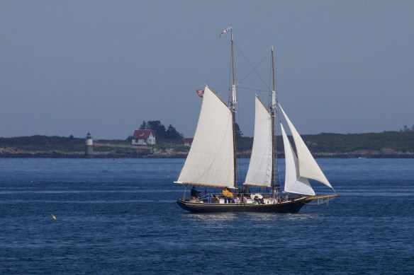 boothbay harbor  094