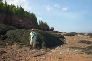 New Brunswick46