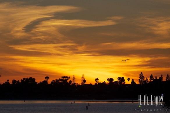 San Diego Beaches  003
