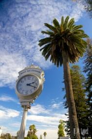 San Diego Beaches  023