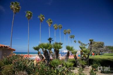 San Diego Beaches 046