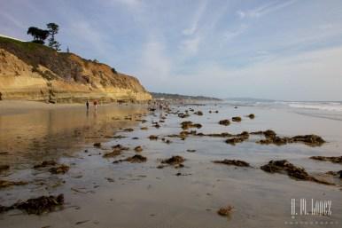 San Diego Beaches 063