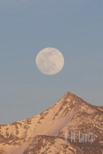 Full moon  031
