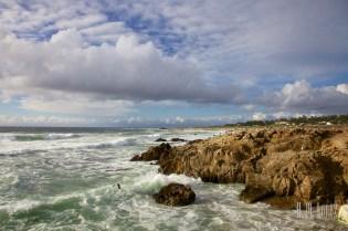Monterey  012
