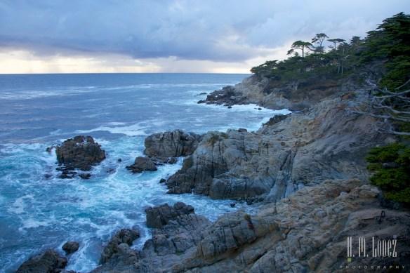 Monterey  020