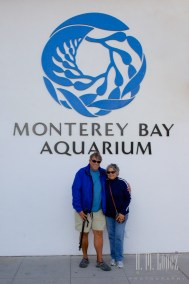 Monterey  029