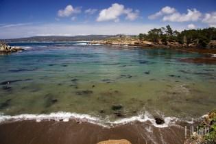 Point Lobos  010