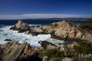Point Lobos  032