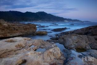 Point Lobos  049