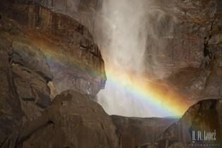Rainbows  010