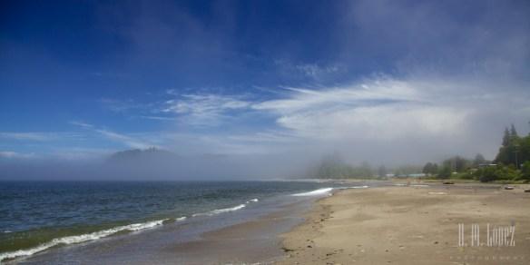 Olympic Coast  052