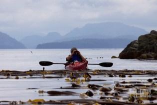 Telegraph Cove Kayak  020