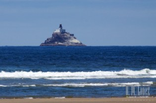 seaside  036