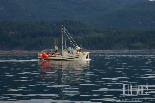 Campbell River  024
