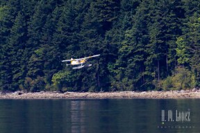 Campbell River 043
