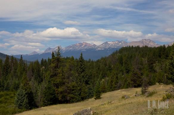 Jasper NP  191