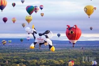 Balloons  262