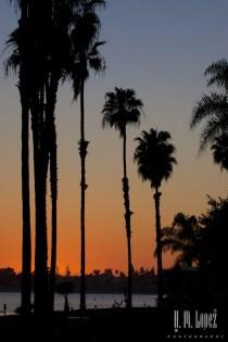 San Diego 2015 95